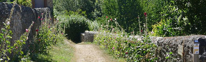 Randonnées à Sainte-Suzanne (Mayenne)