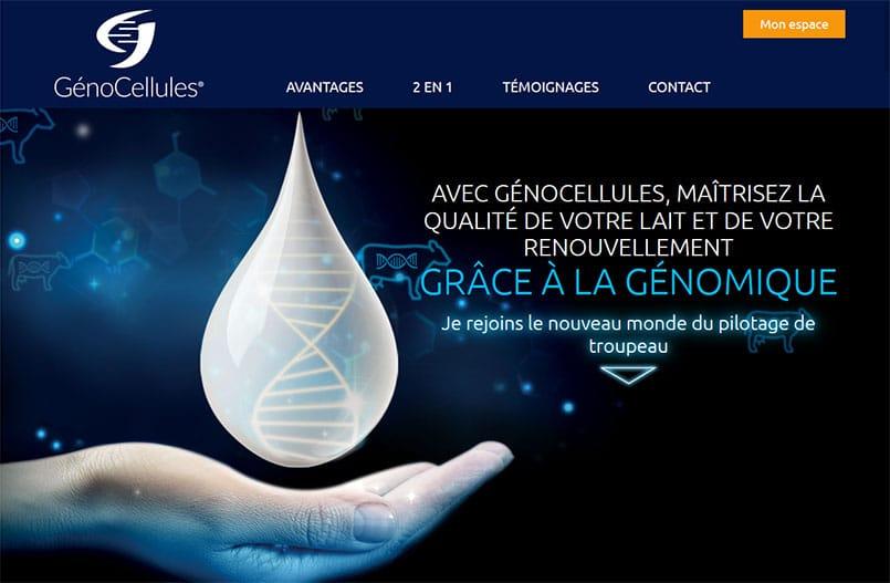 genocellules Avec Génocellules, maîtrisez la qualité de votre lait et de votre renouvellement grâce au génotypage.